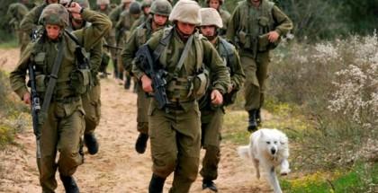 israelies