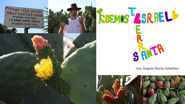 Maravilloso Negev, cactus e investigación – El Cura Amigo con Rodrigo X. Carreras