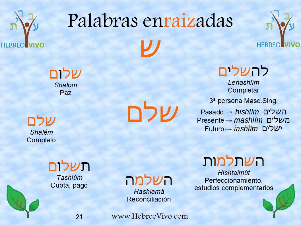 Shin 1 Shalem