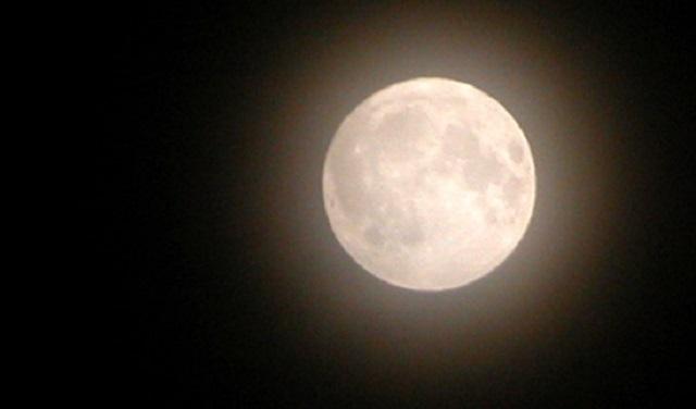 Blanca como la luna (lamed – bet – nun)