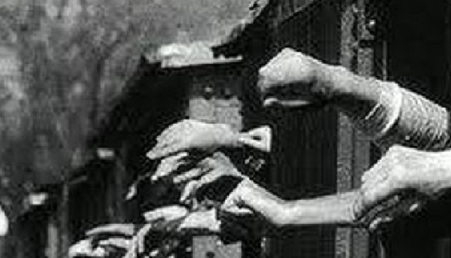 La resistencia en el Holocausto, con Nora Gaón, del Museo de los Combatientes del Gueto (Beit Lojamei Haguetaot)