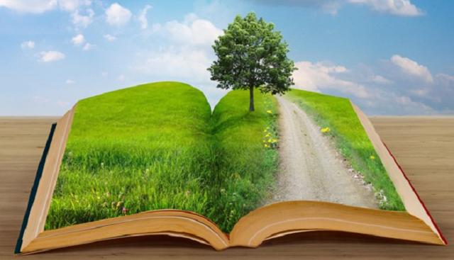 Las plantas en la Biblia (2ª parte): árboles y plantas medicinales
