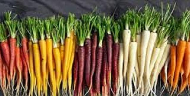 Zanahorias, miel y frutas para Rosh Hashaná