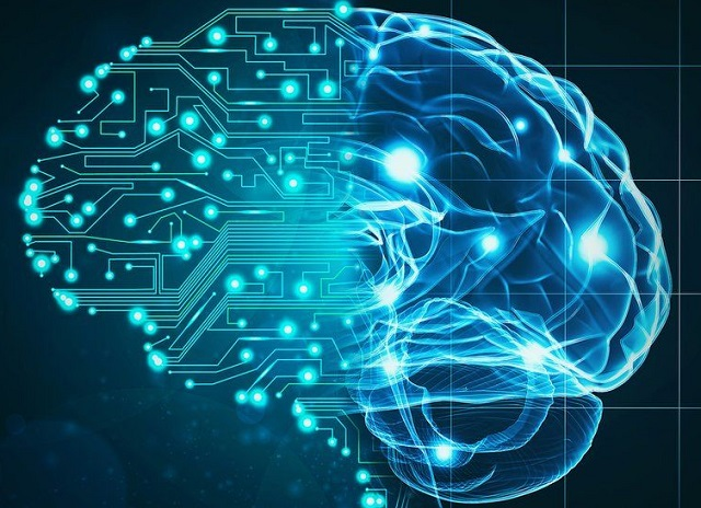 La aplicación de la física cuántica en el cerebro, con Alejandra Mar
